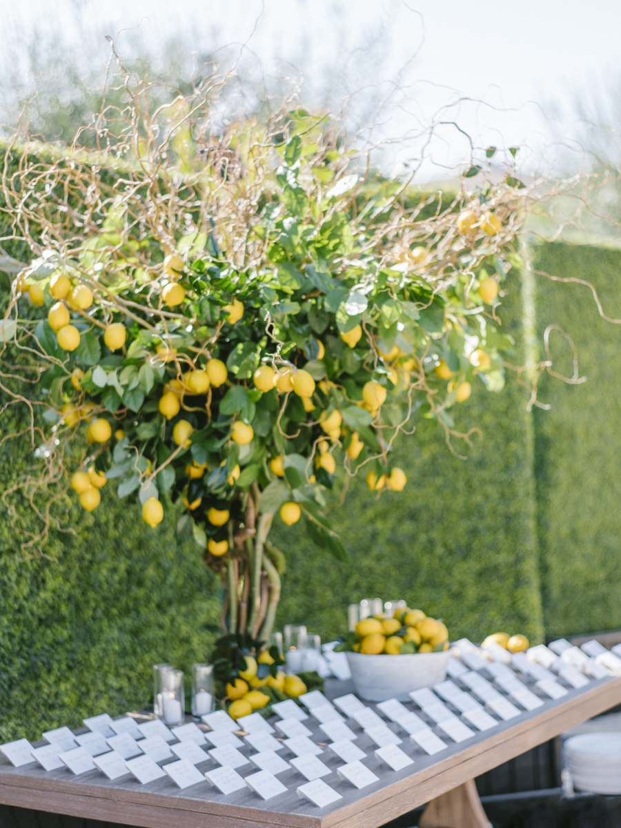 Outdoor Citrus Inspired Cocktail Hour in Malibu1